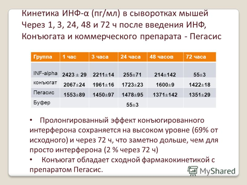 Кинетика ИНФ-α (пг/мл) в сыворотках мышей Через 1, 3, 24, 48 и 72 ч после введения ИНФ, Конъюгата и коммерческого препарата - Пегасис Группа1 час3 часа24 часа48 часов72 часа INF-alpha 2423 ± 292211±14255±71214±14255±3 конъюгат 2067±241961±161723±2316