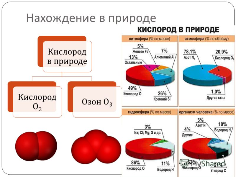 Нахождение в природе Кислород в природе Кислород О 2 Озон О 3