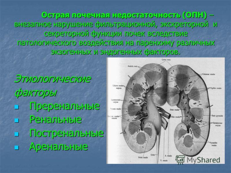 Острая почечная недостаточность (ОПН) – внезапное нарушение фильтрационной, экскреторной и секреторной функции почек вследствие патологического воздействия на паренхиму различных экзогенных и эндогенных факторов. Этиологическиефакторы Преренальные Пр