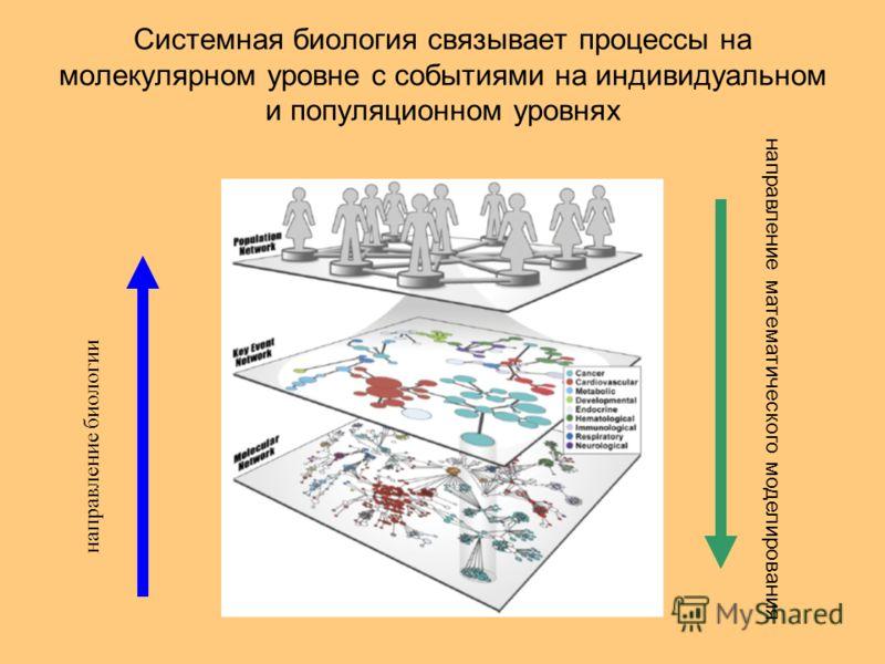 Системная биология связывает процессы на молекулярном уровне с событиями на индивидуальном и популяционном уровнях направление биологии направление математического моделирования