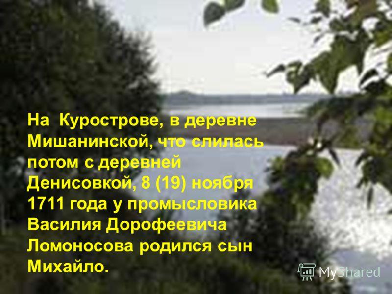 На Курострове, в деревне Мишанинской, что слилась потом с деревней Денисовкой, 8 (19) ноября 1711 года у промысловика Василия Дорофеевича Ломоносова родился сын Михайло.