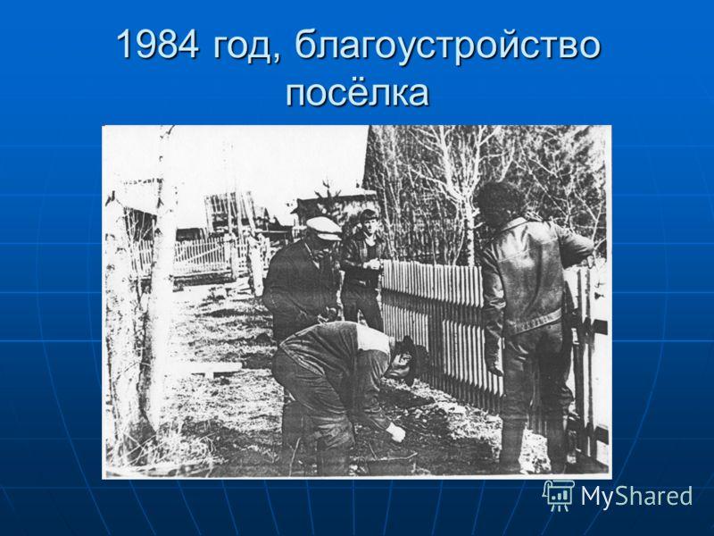 1984 год, благоустройство посёлка