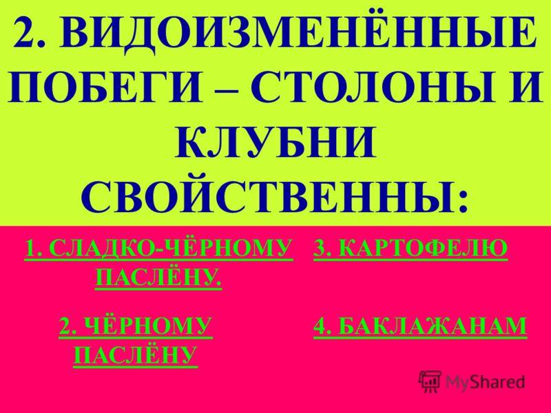 1. К СЕМЕЙСТВУ ПАСЛЁНОВЫХ ОТНОСЯТ: Слайд 10 1. КАРТОФЕЛЬ, ТАБАК, ДОННИК.КАРТОФЕЛЬ, ТАБАК, ДОННИК. 3. БЕЛЕНА, ДУРМАН, ХРЕН.БЕЛЕНА, ДУРМАН, ХРЕН. 2. ТОМАТЫ, БАКЛАЖАН, ПЕРЕЦ.ТОМАТЫ, БАКЛАЖАН, ПЕРЕЦ. 4. ГОРОХ, КАРТОФЕЛЬ, КАПУСТА.ГОРОХ, КАРТОФЕЛЬ, КАПУСТА