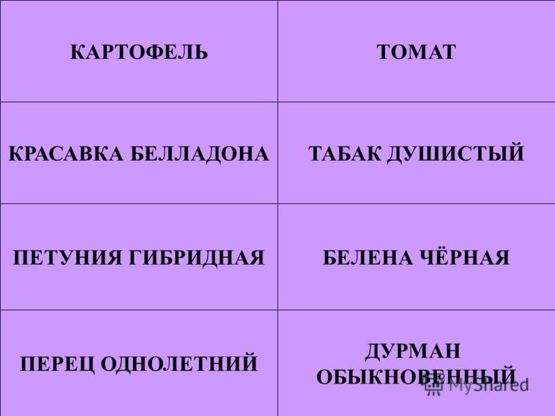 УЭ-5: коррекция знаний по теме.