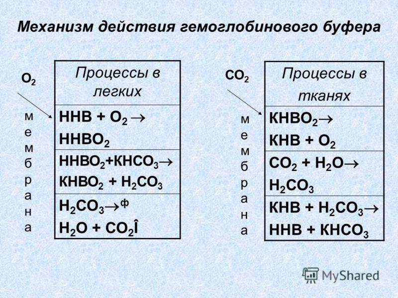 Процессы в легких ННВ + О 2 ННВО 2 ННВО 2 +КНСО 3 КНВО 2 + Н 2 СО 3 Н 2 СО 3 ф Н 2 О + СО 2 Î Процессы в тканях КНВО 2 КНВ + О 2 СО 2 + Н 2 О Н 2 СО 3 КНВ + Н 2 СО 3 ННВ + КНСО 3 мембранамембрана О2О2 СО 2 Механизм действия гемоглобинового буфера мем