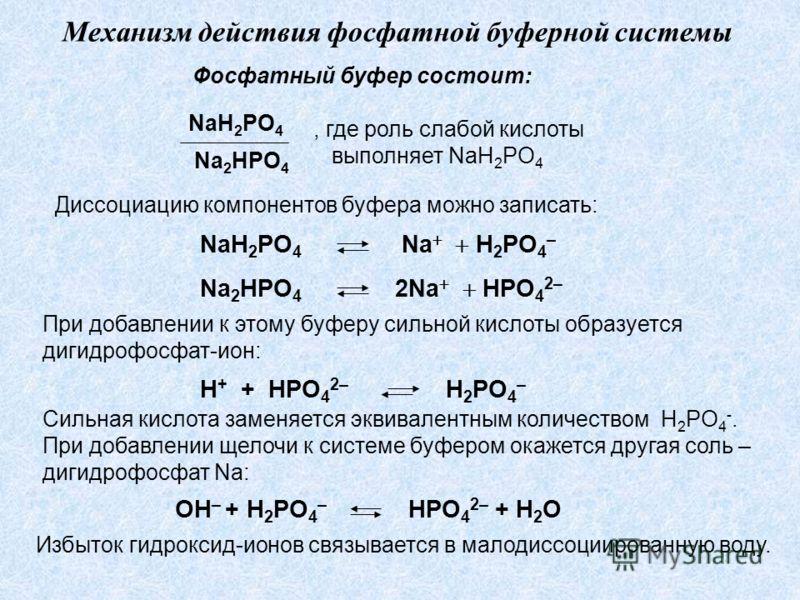 Механизм действия фосфатной буферной системы Фосфатный буфер состоит: NaH 2 PO 4 Na 2 HPO 4, где роль слабой кислоты выполняет NaH 2 PO 4 Диссоциацию компонентов буфера можно записать: NaH 2 PO 4 Na H 2 PO 4 – Na 2 HPO 4 2Na HPO 4 2– При добавлении к