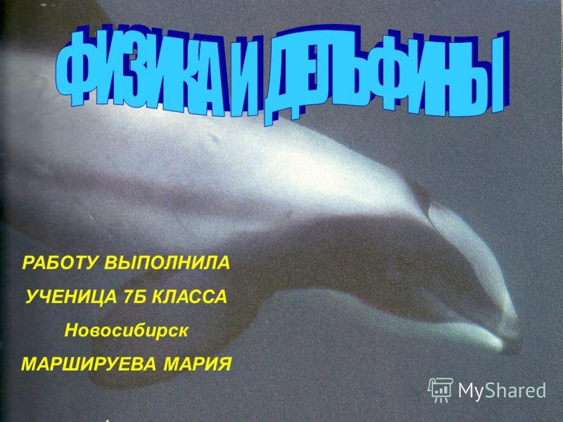 РАБОТУ ВЫПОЛНИЛА УЧЕНИЦА 7Б КЛАССА Новосибирск МАРШИРУЕВА МАРИЯ