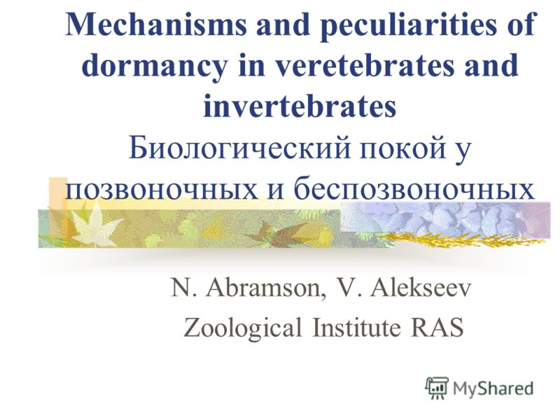 N. Abramson, V. Alekseev Zoological Institute RAS Mechanisms and peculiarities of dormancy in veretebrates and invertebrates Биологический покой у позвоночных и беспозвоночных