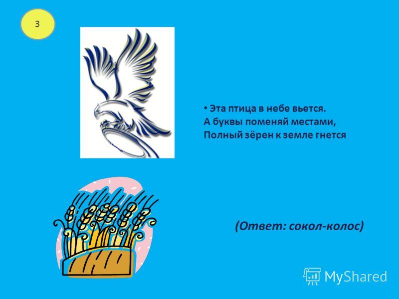 3 Эта птица в небе вьется. А буквы поменяй местами, Полный зёрен к земле гнется (Ответ: сокол-колос)