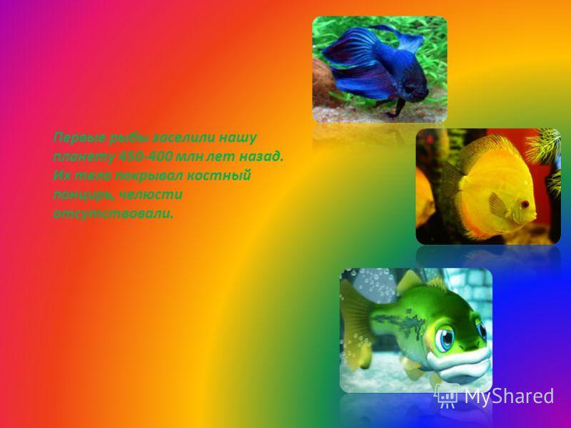 Первые рыбы заселили нашу планету 450-400 млн лет назад. Их тело покрывал костный панцирь, челюсти отсутствовали.
