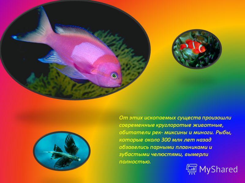 От этих ископаемых существ произошли современные круглоротые животные, обитатели рек- миксины и миноги. Рыбы, которые около 300 млн лет назад обзавелись парными плавниками и зубастыми челюстями, вымерли полностью.