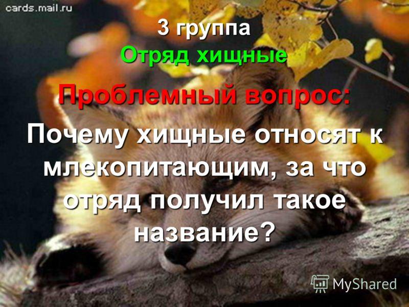 3 группа Отряд хищные Проблемный вопрос: Почему хищные относят к млекопитающим, за что отряд получил такое название?