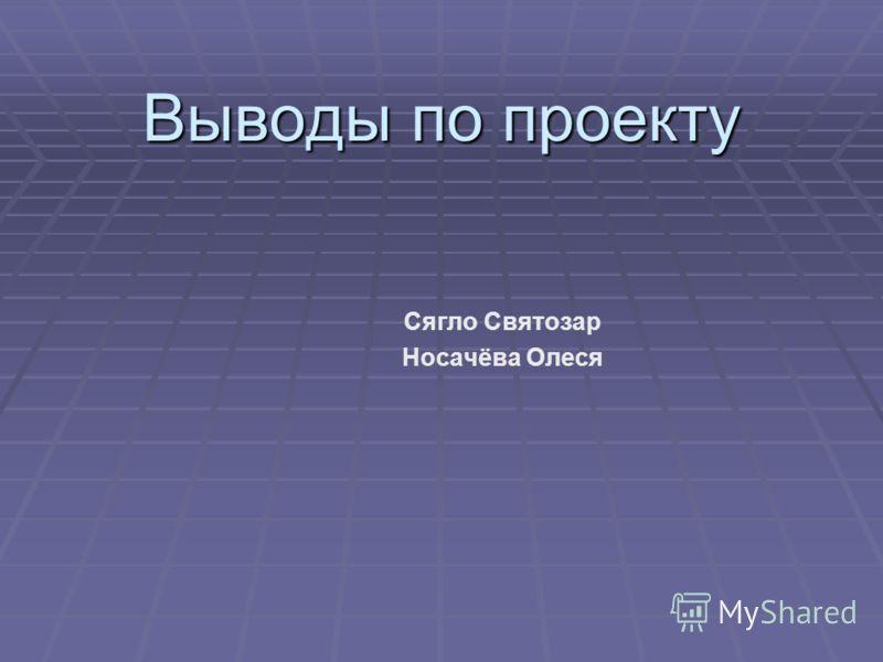 Выводы по проекту Сягло Святозар Носачёва Олеся