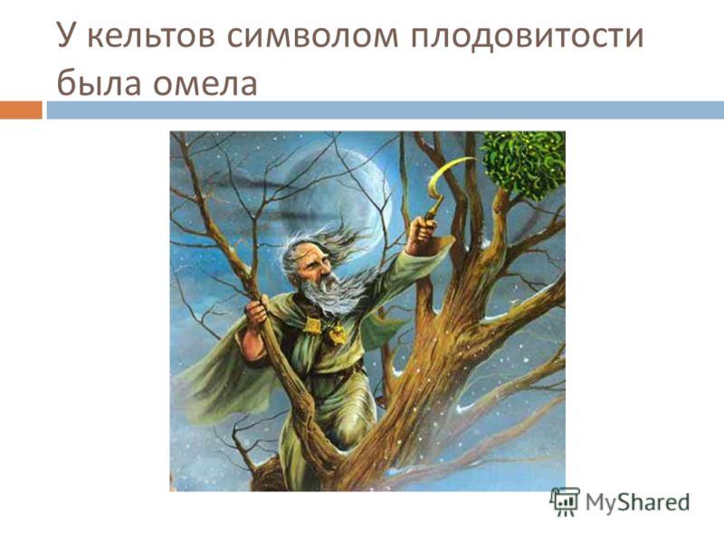 У кельтов символом плодовитости была омела