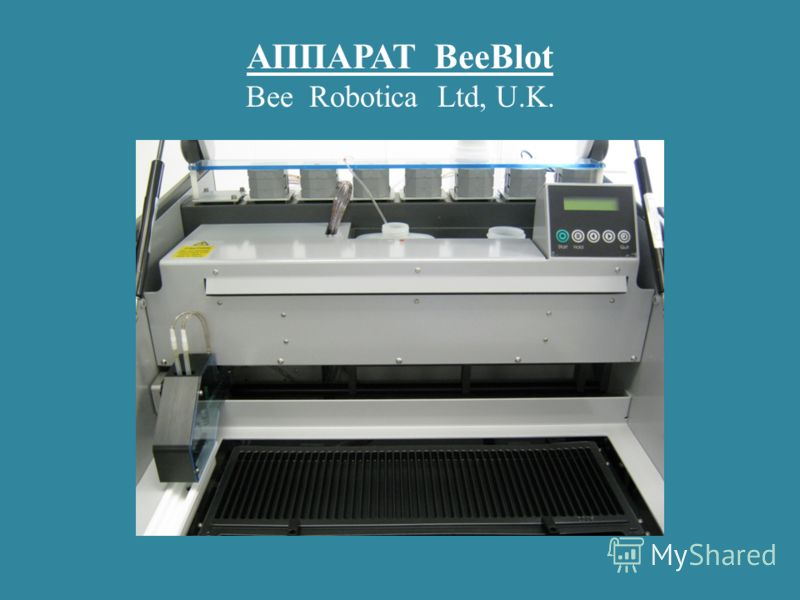 АППАРАТ BeeBlot Bee Robotica Ltd, U.K.