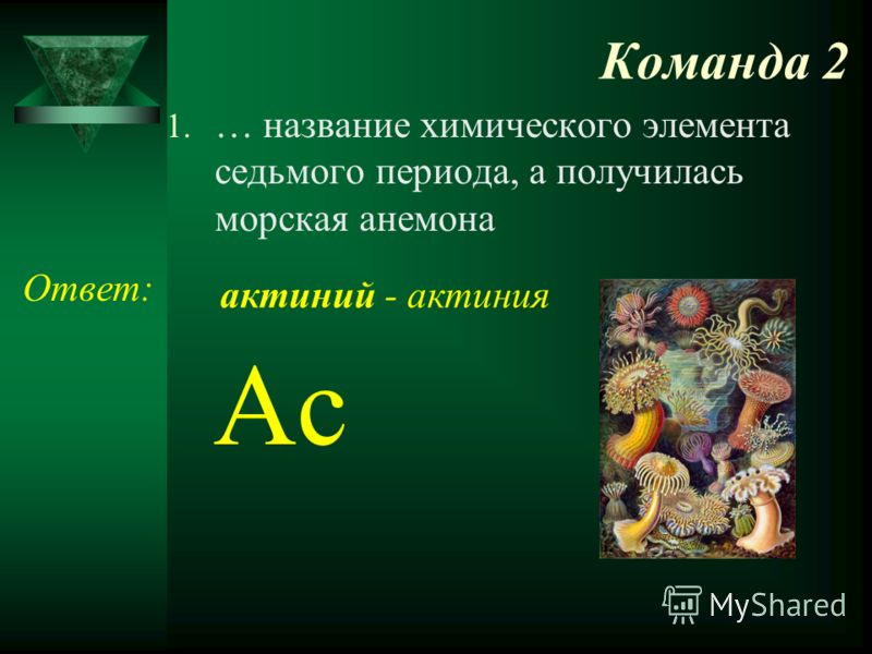 Команда 2 1. … название химического элемента седьмого периода, а получилась морская анемона Ответ: Ac актиний - актиния