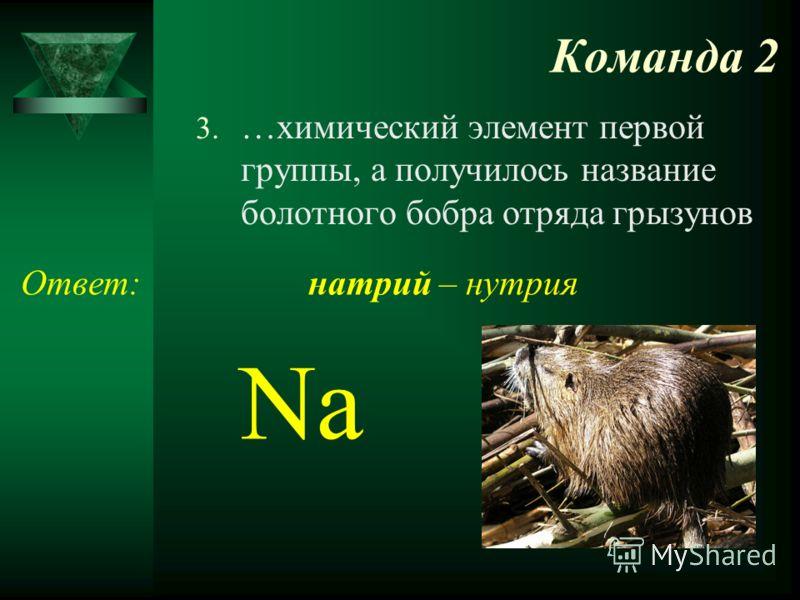 Команда 2 3. …химический элемент первой группы, а получилось название болотного бобра отряда грызунов Ответ: Na натрий – нутрия