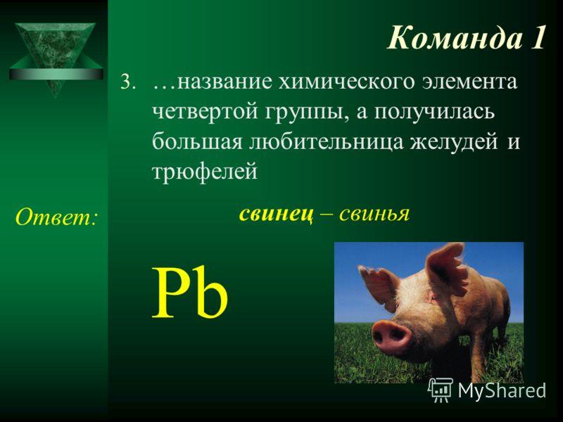 Команда 1 3. …название химического элемента четвертой группы, а получилась большая любительница желудей и трюфелей Ответ: Pb свинец – свинья