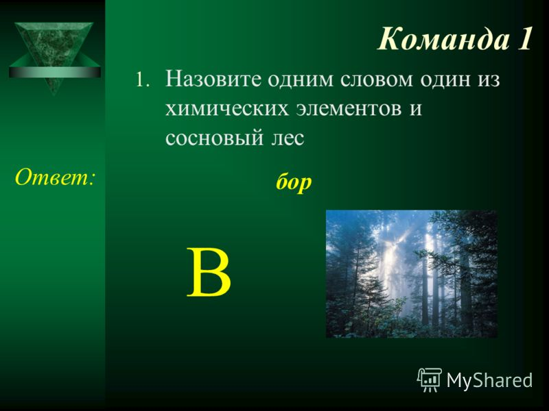 Команда 1 1. Назовите одним словом один из химических элементов и сосновый лес Ответ: бор В