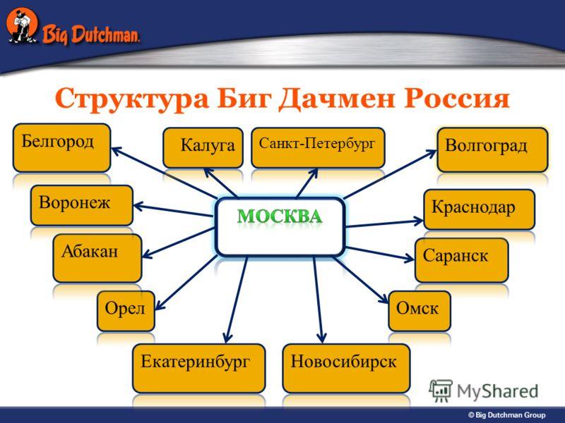 Структура Биг Дачмен Россия