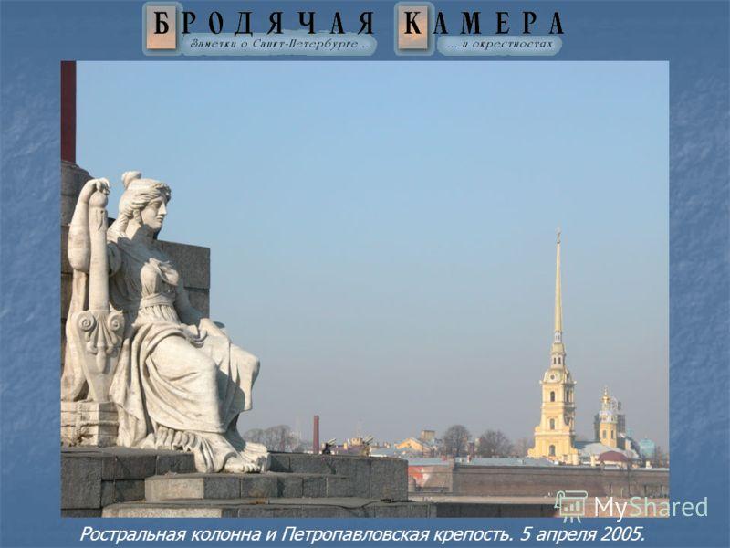 Ростральная колонна и Петропавловская крепость. 5 апреля 2005.