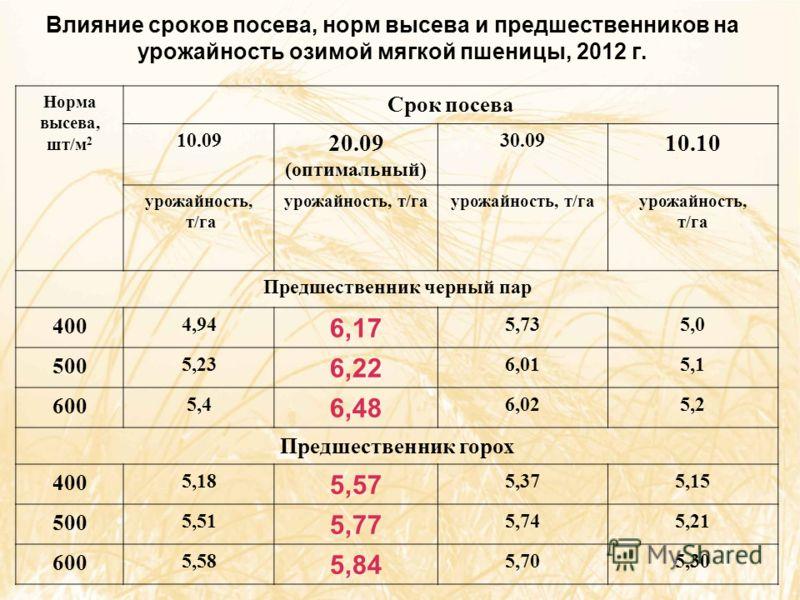 Влияние сроков посева, норм высева и предшественников на урожайность озимой мягкой пшеницы, 2012 г. Норма высева, шт/м 2 Срок посева 10.09 20.09 (оптимальный) 30.09 10.10 урожайность, т/га урожайность, т/га урожайность, т/га Предшественник черный пар