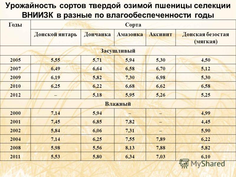 Урожайность сортов твердой озимой пшеницы селекции ВНИИЗК в разные по влагообеспеченности годы ГодыСорта Донской янтарьДончанкаАмазонкаАксинитДонская безостая (мягкая) Засушливый 20055,555,715,945,304,50 20076,496,646,586,705,12 20096,195,827,306,985
