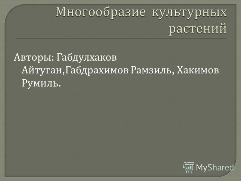 Авторы : Габдулхаков Айтуган, Габдрахимов Рамзиль, Хакимов Румиль.