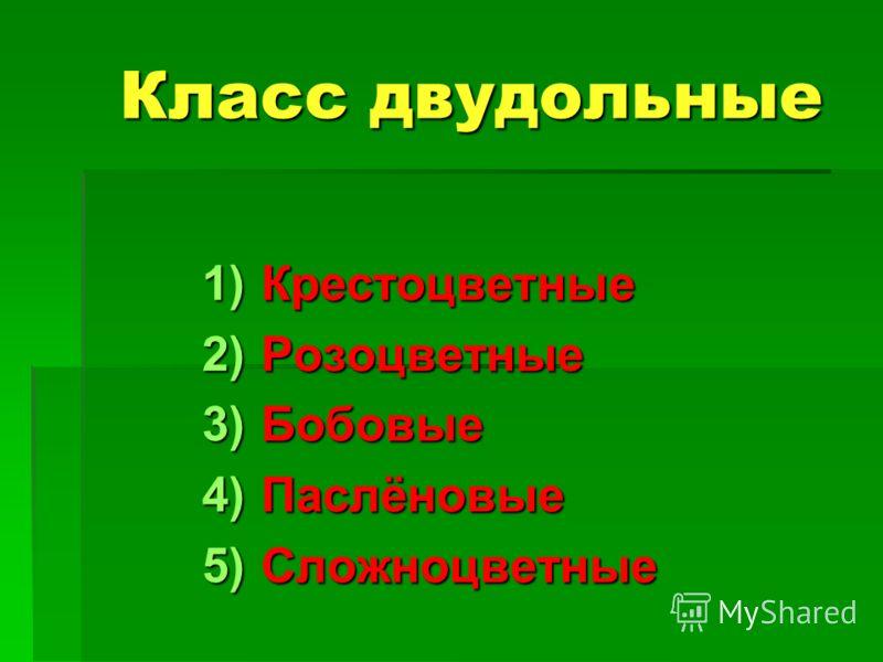 Класс двудольные 1)К рестоцветные 2)Р озоцветные 3)Б обовые 4)П аслёновые 5)С ложноцветные