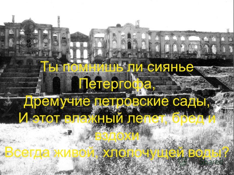 Ты помнишь ли сиянье Петергофа, Дремучие петровские сады, И этот влажный лепет, бред и вздохи Всегда живой, хлопочущей воды?