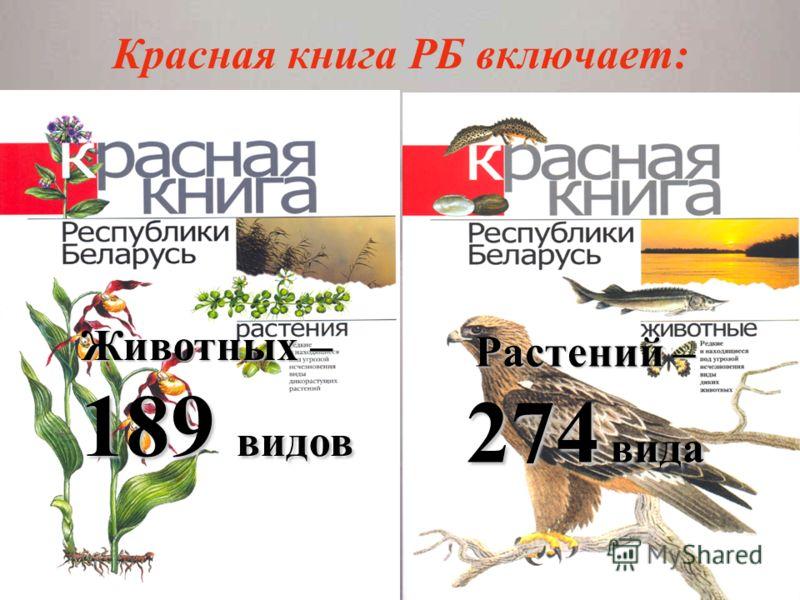 Презентация на тему Красная книга РБ включает Животных  1 Красная книга РБ включает Животных 189 видов Растений 274 вида