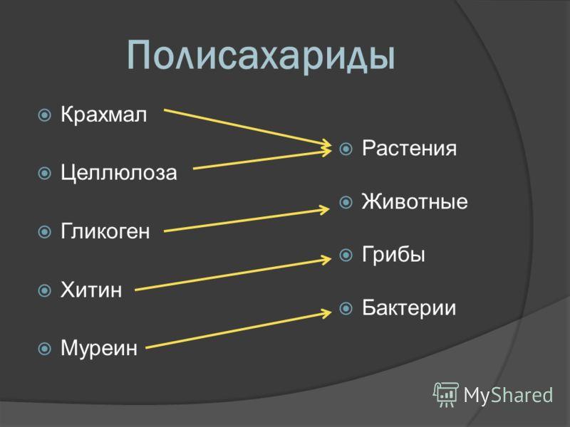 """Презентация на тему: """"Часть 1 (Липиды / углеводы / белки ... Липиды Жиры"""