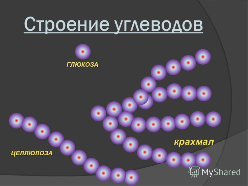 Строение углеводов ГЛЮКОЗА крахмал ЦЕЛЛЮЛОЗА