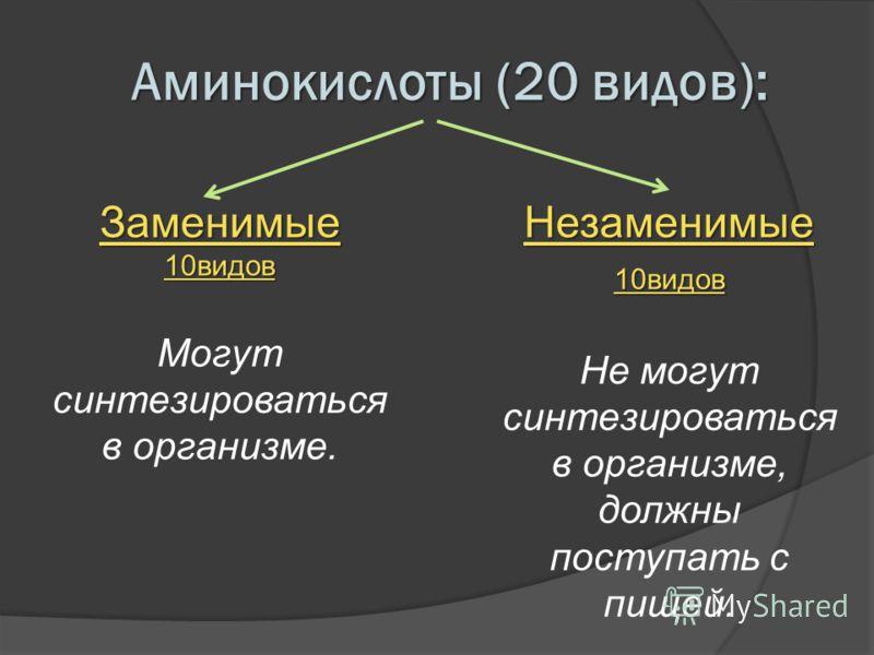 Аминокислоты (20 видов): Заменимые10видов Могут синтезироваться в организме. Незаменимые 10видов Не могут синтезироваться в организме, должны поступать с пищей.
