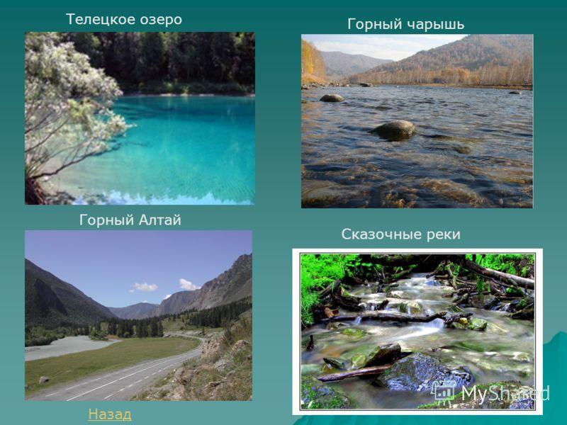 Телецкое озеро Горный чарышь Горный Алтай Сказочные реки Назад