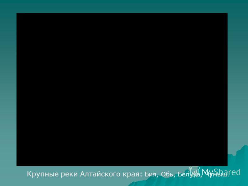 Крупные реки Алтайского края: Бия, Обь, Белуха, Чумыш.