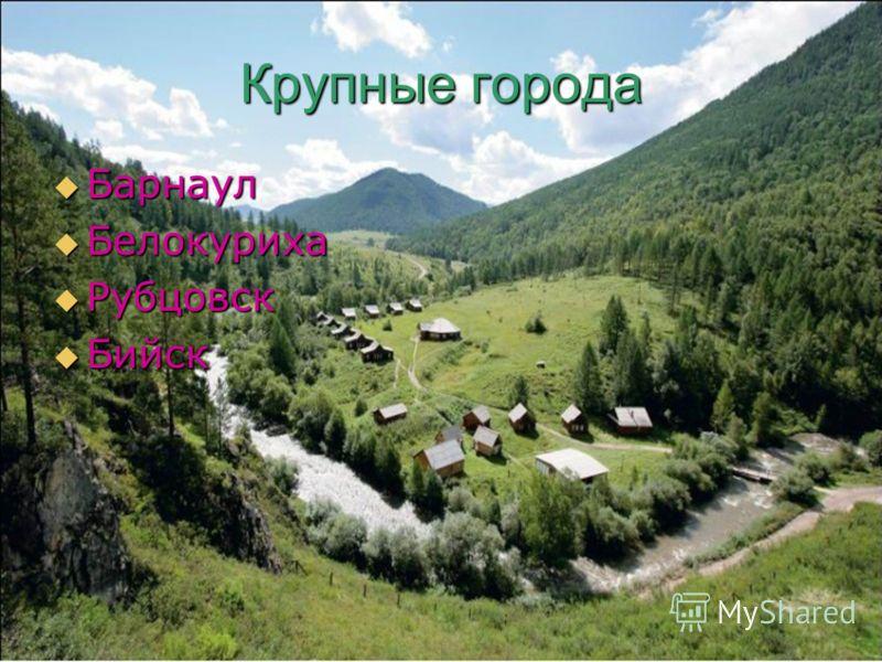 Крупные города Барнаул Барнаул Белокуриха Белокуриха Рубцовск Рубцовск Бийск Бийск
