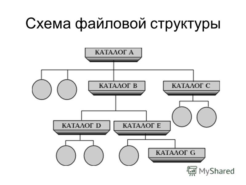 Схема файловой структуры
