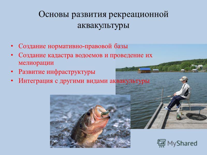 Основы развития рекреационной аквакультуры Создание нормативно-правовой базы Создание кадастра водоемов и проведение их мелиорации Развитие инфраструктуры Интеграция с другими видами аквакультуры