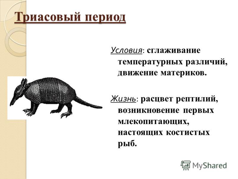 Триасовый период Условия : сглаживание температурных различий, движение материков. Жизнь : расцвет рептилий, возникновение первых млекопитающих, настоящих костистых рыб.
