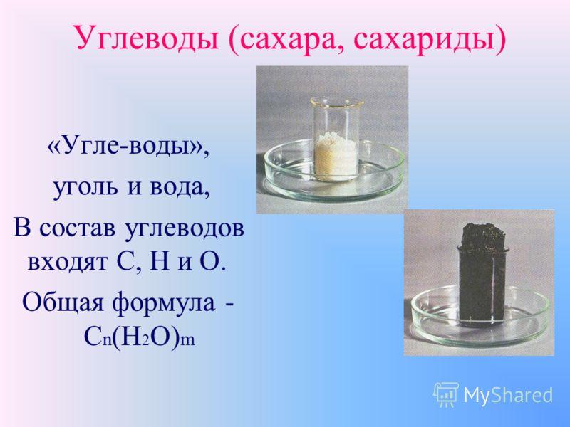 Основные разделы темы «Углеводы» 1.Общие сведения об углеводах 2.Моносахариды 3.Дисахариды 4.Полисахариды
