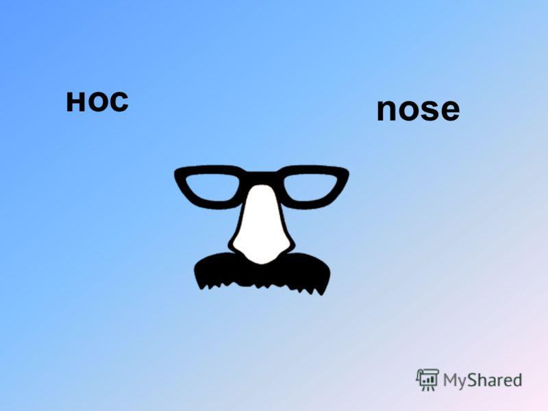 нос nose