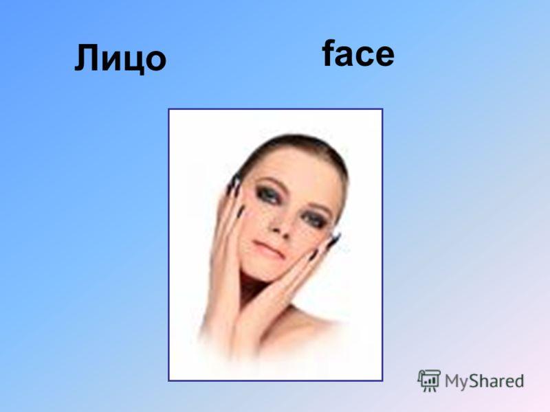 Лицо face
