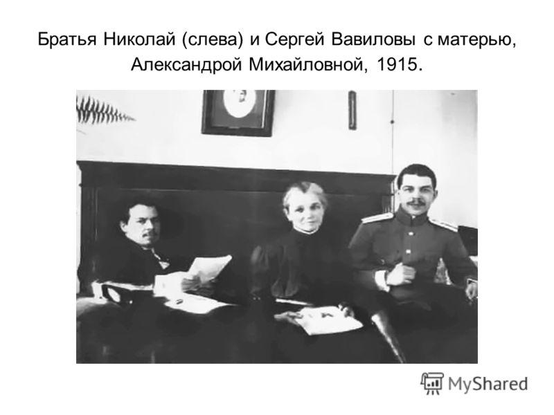 Братья Николай (слева) и Сергей Вавиловы с матерью, Александрой Михайловной, 1915.