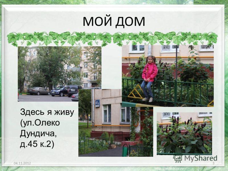 МОЙ ДОМ 04.11.20123 Здесь я живу (ул.Олеко Дундича, д.45 к.2)