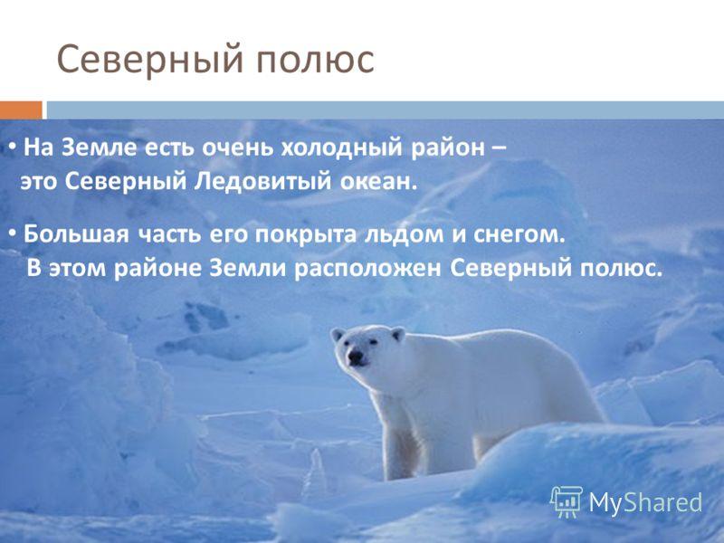 На Земле есть очень холодный район – это Северный Ледовитый океан. Большая часть его покрыта льдом и снегом. В этом районе Земли расположен Северный полюс. Северный полюс