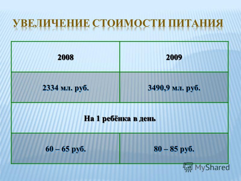 20082009 2334 мл. руб. 3490,9 мл. руб. На 1 ребёнка в день 60 – 65 руб. 80 – 85 руб.