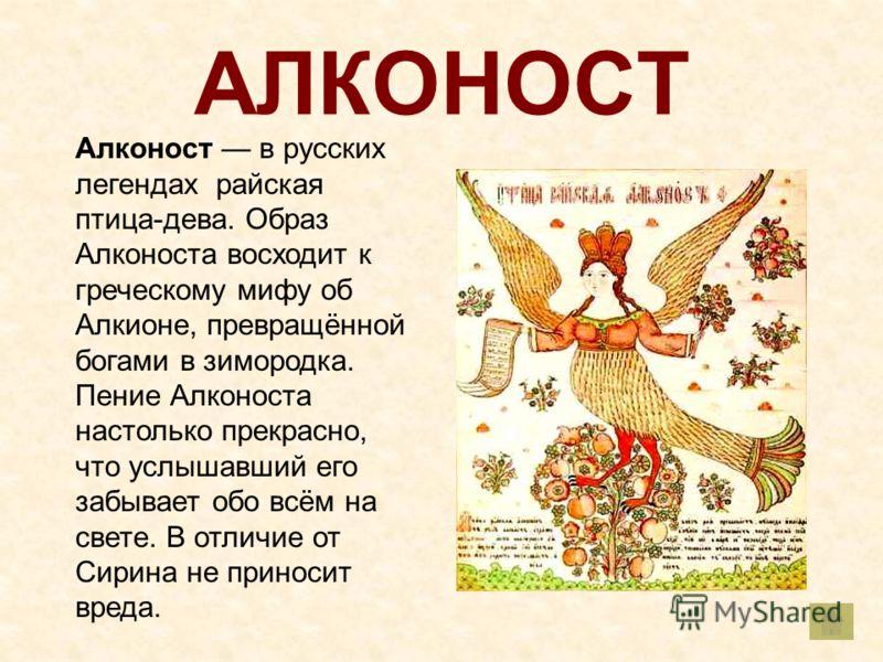 АЛКОНОСТ Алконост в русских легендах райская птица-дева. Образ Алконоста восходит к греческому мифу об Алкионе, превращённой богами в зимородка. Пение Алконоста настолько прекрасно, что услышавший его забывает обо всём на свете. В отличие от Сирина н