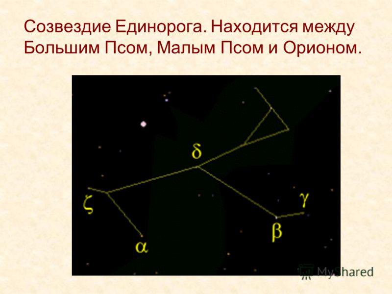 Созвездие Единорога. Находится между Большим Псом, Малым Псом и Орионом.