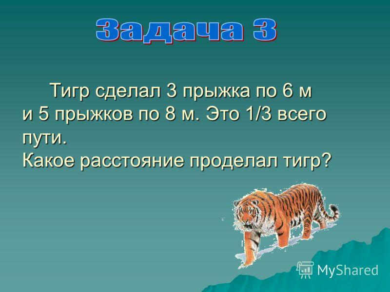 Тигр сделал 3 прыжка по 6 м и 5 прыжков по 8 м. Это 1/3 всего пути. Какое расстояние проделал тигр? Тигр сделал 3 прыжка по 6 м и 5 прыжков по 8 м. Это 1/3 всего пути. Какое расстояние проделал тигр?